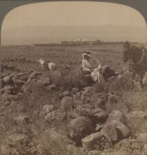 Palestine. Traditional Capernaum Christ's Home by the Sea of Galilee. Stereoview