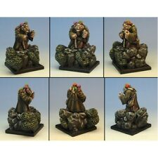 Ginfritter Dungeons & Dragons FAIRY005 Rasmus Dwarven Mage w/ Familiars 28mm