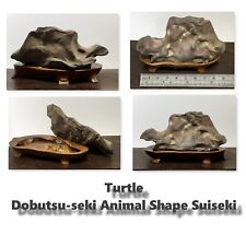 Suiseki Turtle (Dobutsu-Seki-ANIMAL SHAPED Suiseki) un joli Rouge Suiseki