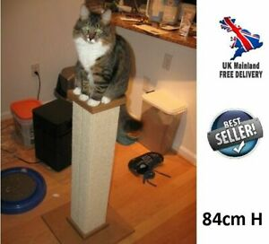 Tall Cat Scratching Post Pet Pole Activity Centre Kitty Gym Climbing Furniture