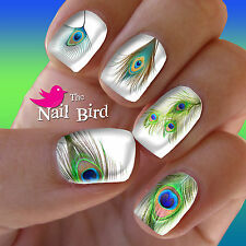 Nail Art Nail Decals Nail Transfers Nail Wraps - PEACOCK FEATHER MIX Nail Decals