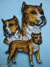 IRON-ON EMBROIDERED PATCH - PIT BULL - AMERICAN PIT BULL - DOG