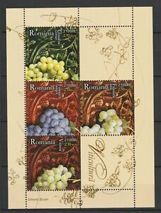 Romania 2005 Plants Grapes MNH Block