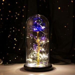 Purple Rose LED Gold Foil Flower with Fairy String Lights in Dome