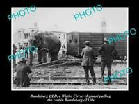 OLD LARGE HISTORIC PHOTO OF BUNDABERG QLD, WIRTHS CIRCUS ELEPHANT & CART c1930s