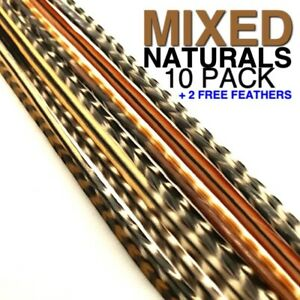 Feather Hair Extensions MIXED NATURALS 10 PACK GRIZZLY LONG MicroBeads CraftKit
