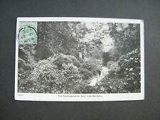 Early Gale & Polden PC of The Rhododendrum Dell, Kew Gardens, London. Post 1909.