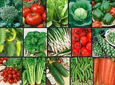 Vegetable FAVORITES Garden Lot ~ Over 1,625 Fresh Seeds ~ 15 Varieties ~ Non GMO