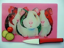 Unique Pink Glass Chopping Board with a GUINEA PIG  design by artist Maria Moss
