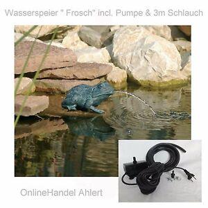 Teich Pumpe Wasserspeier Frosch Gartenteich Springbrunnen Garten Figur Deko OVP