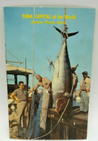 Postcard Real Photo Tuna Capital Of The World Galilee, Rhode Island from 1950's
