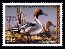 RW75 2008 Federal Duck Stamp VF-XF OGNH EBAY Low Store Price-Ex- Offer?