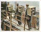 Pigeons Transport Soldiers War Deutsches Heer WWI WELTKRIEG 14/18 CHROMO