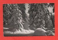 die frank Comté malerische Nr. 10118 - Wald im winter (J8112)