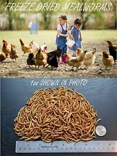 Freeze Dried Mealworms,Chicken Treats,Chicken Feed,Turtle,Bird,Lizard,A bf28