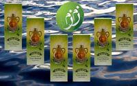 Zamzam Drinking Water - Pack of 6 - ماء زمزم للشرب من مكة المكرمة 6 عبوات
