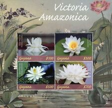 Guyana 2019 MNH Victoria Amazonica Giant Water Lily 4v M/S Flowers Plants Stamps