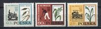 """35701) Poland 1963 MNH Fao """"Freedom From Hunger"""""""
