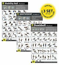 """Strength Training Workout Exercise Poster Bundle 3 Pack Free Weight 18""""x24"""""""