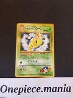 Koga's Kakuna | キョウのコクーン No. 014 JAPANESE Pokémon Gym Challenge NM