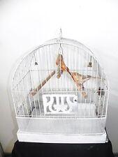 Antique Art Deco Metal Hendryx Bird Cage Glass Water Feeder & 2 Feather Birds