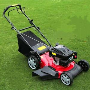 Simple Hand Push Self Propelled Lawn Mower Gasoline Four Stroke Farm 173cc