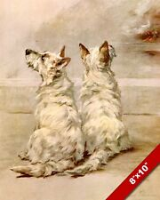 WEST HIGHLAND WHITE TERRIER DOGS PET PUPPY DOG ART PAINTING PRINT ON REAL CANVAS