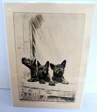Cairn Terrier Reproduced Print The Weather Bureau by Diana Thorne New