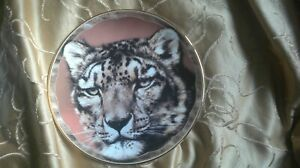 Snow Leopard Royal Doulton Compton & Woodhouse Fine Bone China Plate