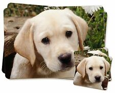 Yellow Labrador Puppy Twin 2x Placemats+2x Coasters Set in Gift Box, AD-L70PC