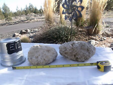 2 MED Pumice Stone Aquarium Landscaping Floating Natural Rock Spa Volcanic #E12