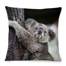 Koala Bears Cushion Cover 16x16 inch 40cm Cute Mum Baby Pale photo wild