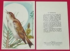 1955-1960 CHROMO GRANDE IMAGE ECOLE BON-POINT OISEAUX ROSSIGNOL BIRDS
