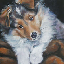 "Shetland Sheepdog SHELTIE dog art Canvas PRINT of LAShepard painting 12x12"" pup"