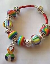LGBT Gay Pride 🌈  Charm Beaded Bracelet