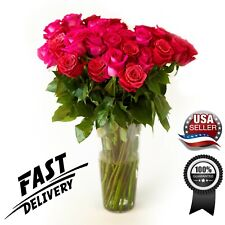 Fresh Hot Pink Roses Flower Bouquet 12 Roses Long Stem-Luxury & Fresh Roses -Usa