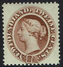 NEWFOUNDLAND 1894 QV 12C DEEP BROWN MNH **