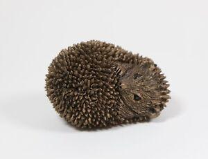 Frith Sculpture Hedgehog  Dizzy  Hoglet   Miniature Bronze