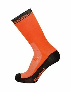 2017 Lombardia Cycling Socks - Made in Italy by Santini