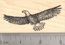 Bald Eagle Rubber Stamp, Bird in Flight J4813 Wood Mounted