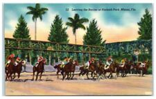 Mid-1900s Leaving the Barrier of Hialeah Park Race Track, Miami, Fl Postcard