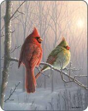 """New 79""""x 96"""" Queen Winter Cardinal Bird Snow Sun Mink Blanket Super Plush Fleece"""
