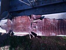 Genuine Wild American Alligator leather Swamp Skin Gator Hide Brown 12B