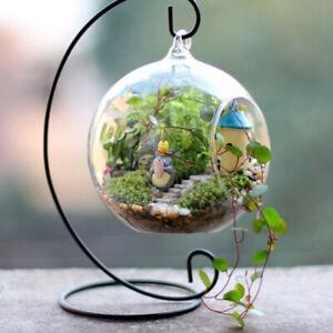 Iron Hanging Plant Glass Vase Terrarium Stand Flower Plant Pot Holder Home Decor