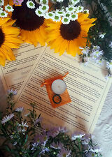 Bonne chance de malchance ~ bougie sort kit ~ affirmation, agate wiccan ring