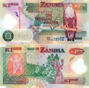 ■■■ Zambia 1000 Kwacha 2012 !!! P-44i EXTREMELY RARE Polymer UNCIRCULATED ■■■