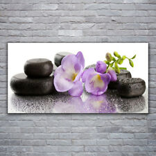 Acrylglasbilder Wandbilder aus Plexiglas® 120x60 Blumen Steine Kunst