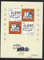CHINA 2019 -1 豬 Yellow New Year of PIG Stamp S/S GIFT