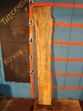 "#9104 1 1/4"" Thick black line spalted flaming red box elder slab"