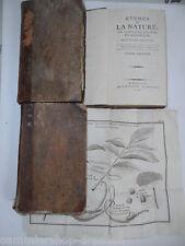 Zimmermann 1866 de la planeta y sus maravillas naturales pasquín manual geografía